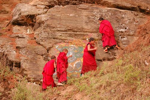 novice-monks